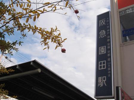 20101121_09.jpg